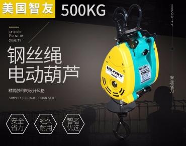 智友牌进口钢丝绳电动葫芦 500kg